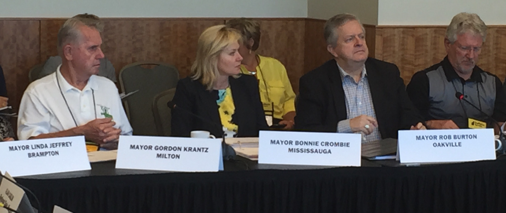 With my fellow Mayors at the joint LUMCO/MARCO meeting, listening to presentations on our priority issues.